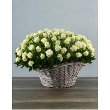 101 роза (Россия) белая в корзине