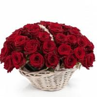 51 красная роза (Эквадор) в корзине