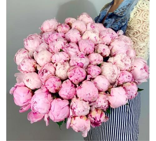 51 Пион розовый