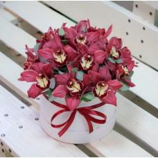 Орхидеи в шляпной коробке - 2