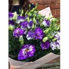 Фиолетовые лизиантусы