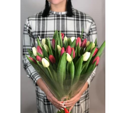 Элитные тюльпаны микс 25 шт