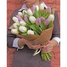 Тюльпаны сиреневого и белого цвета 25 шт